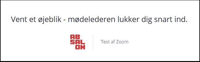 828 368 568 Test af Zoom – Google Chrome