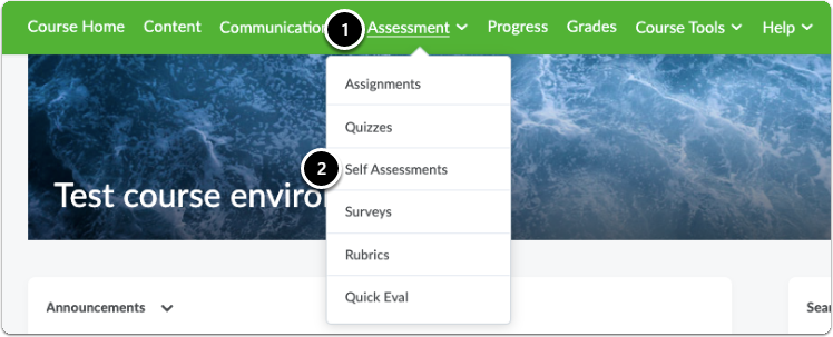 Click on Assessment in the green navigation bar, a drop-down menu will appear click on Self Assessments