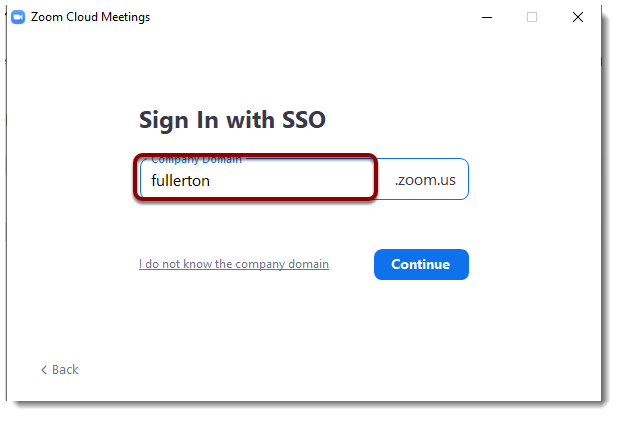 Company Domain field selected