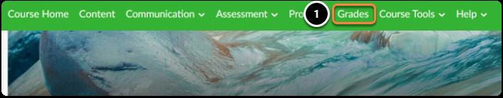 On the green navigation bar click on Grades