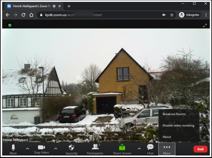 Henrik Abildgaard's Zoom Meeting – Google Chrome