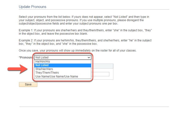 Highlight of Pronoun dropdown options
