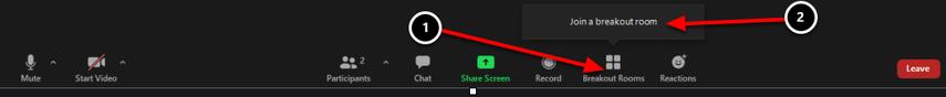 Launch Meeting - Zoom – Google Chrome