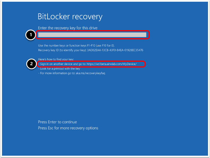 Entering the BitLocker Recovery Key at the Windows prompt.