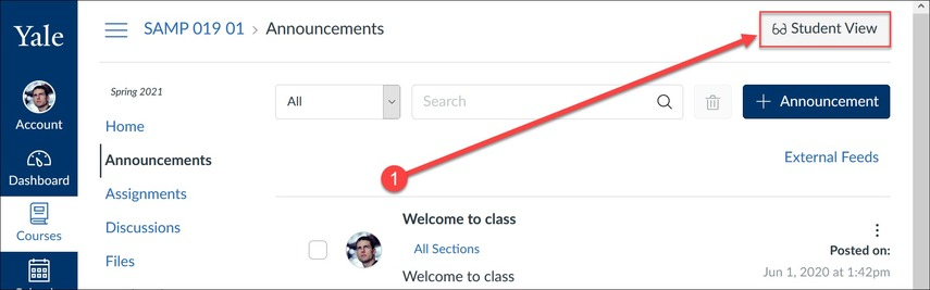 The Student View button can be accessed in the upper right corner of most pages within Canvas.