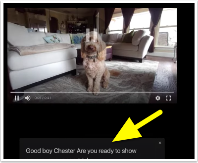 Chrome can now caption audio and video 🔊