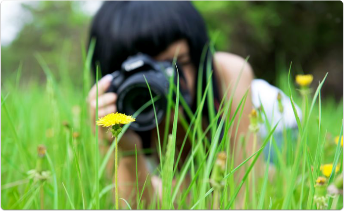 Woman with a camera taking a photograph of a flower