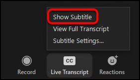 show subtitle