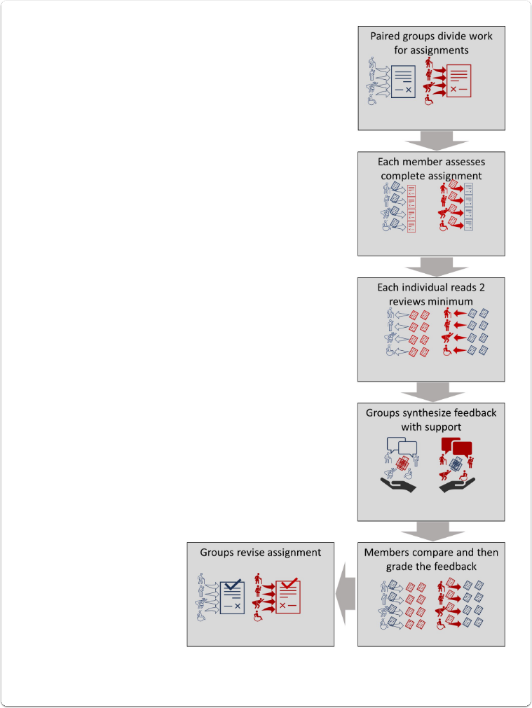 Figure 1: Peer feedback structure scheme