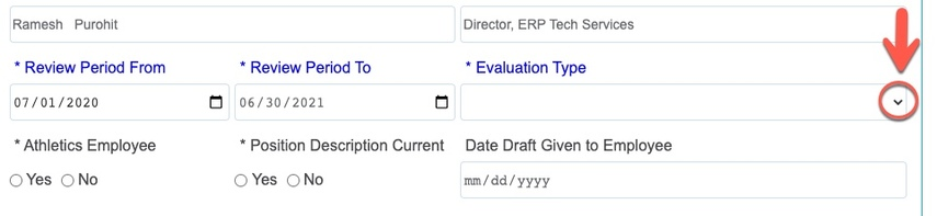 Arrow pointing to Evaluation type drop-down caret