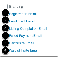 View Email Customization Options