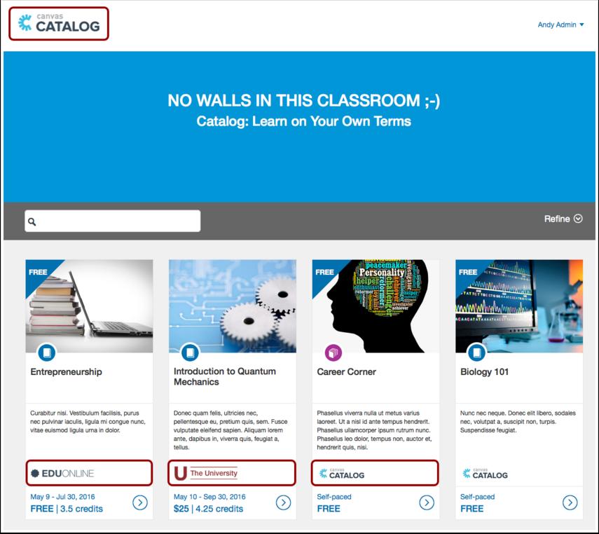 Custom Catalog Branding