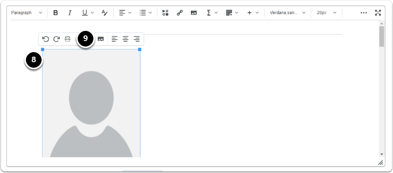 Image will appear in the Editor> click on the image a menu will appear click on image options