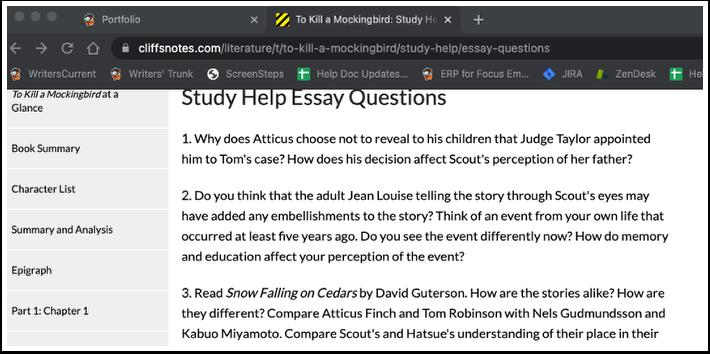 To Kill a Mockingbird: Study Help | Essay Questions | CliffsNotes