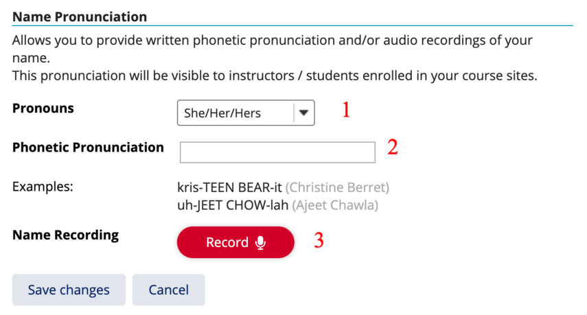 Example of pronouns and phonetic settings