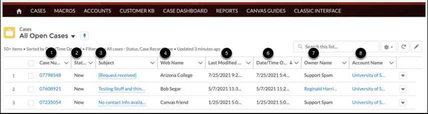 Visualizar casos