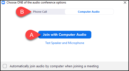 audio conference options