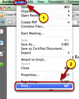 3. Then go to File --> Print.
