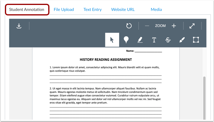 Submit Student Annotation