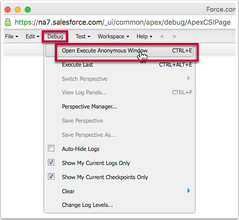In the popup window - click on Debug > Open Execute Anonymous Window