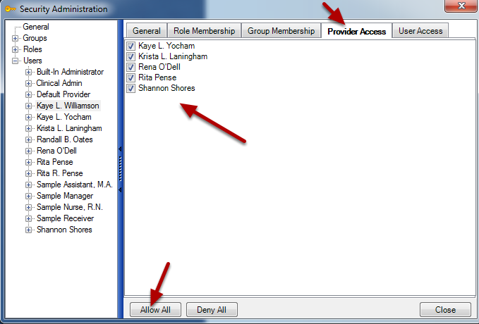 Assigning Provider Access for a New User