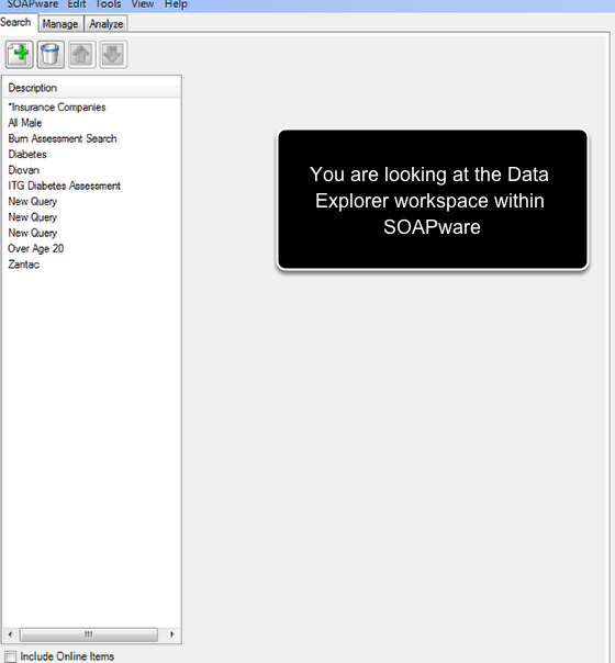 Congratulations, you have now entered the Data Explorer workspace!