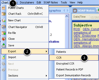 Accessing the CCR Export