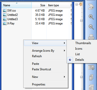 View Files Options