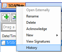 Access and use of Document History