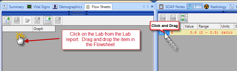 Select Labs to be entered on the Flow sheet