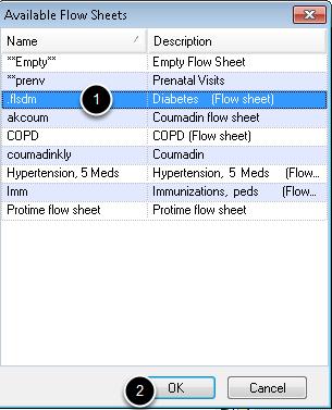 3. Insert Flow Sheet Template