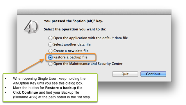 3. Restore the Backup File