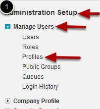 Setting Access for Fields on a Single Profile