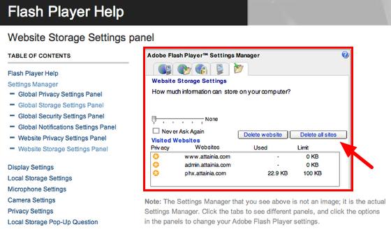 Step 1: Website Storage Settings Panel