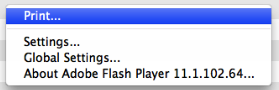Adjusting Storage Capacity for Flash Player