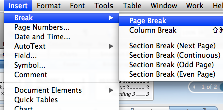 Insert Page Break