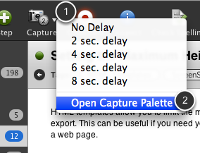 Open the Capture Palette