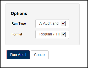 Options section with Run Audit button highlighted