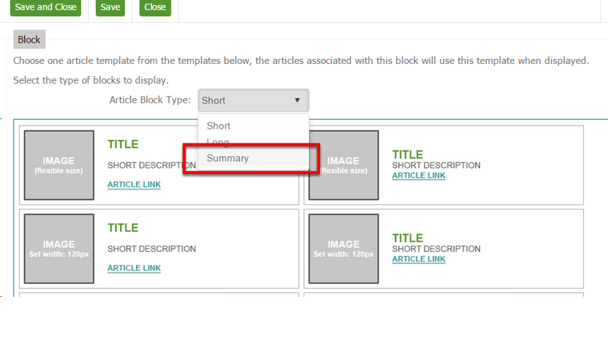 Article Block Type- Summary