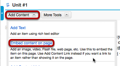 File upload: Click Add Content, then Embed content on page.