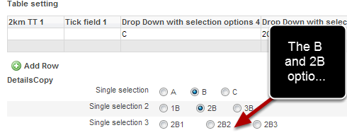 The subsequent options are not displayed until the previous one is selected. Once an option is selected the next field's options appear