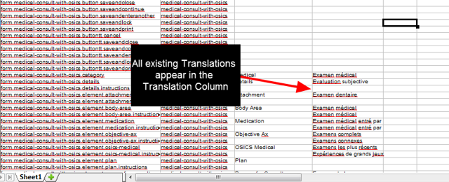 Once the file opens and it editable, you can see any existing translation appear in the translation column.