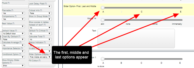 Slider Options Display: First, Middle and Last Options (for an odd number of options)