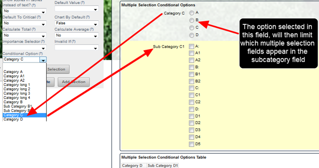 The example here shows that options within a Multiple Selection Fields can be set to appear conditionally; based on prior field's selected option