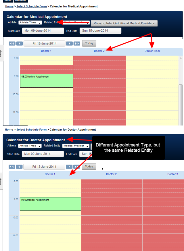 How the Related Entity appears during Scheduling  (e.g. a in Medical Appointment Form, or a Doctor Appointment Form)
