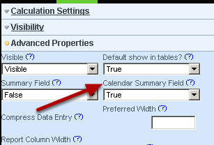Calendar Summary: allow you to specify whether you want the field to appear underneath the name of the form on the calendar.