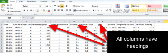 Now that you have the complete raw data file you can start building your form.