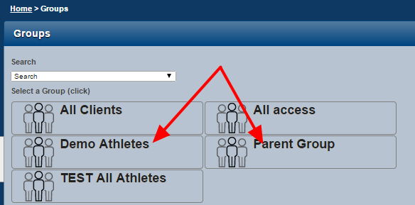 N.B. If you have access to multiple groups or subgroups, but they are not linked via a common parent group, you CANNOT load these together. Ask your administrator to create a parent group linking them.