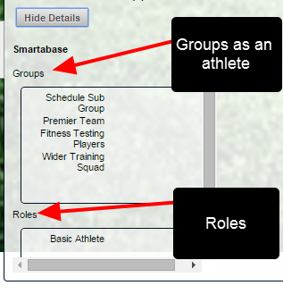 Displays the Groups and Roles that the user is in
