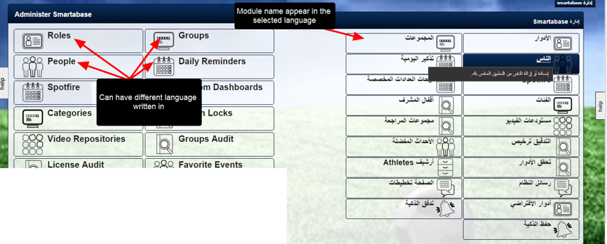 Admin Site modules which are NOT translated, but which can have different languages written into them
